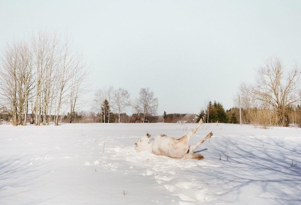 Pieci jauni Latvijas fotogrāfi, par kuriem priecājas ārzemēs