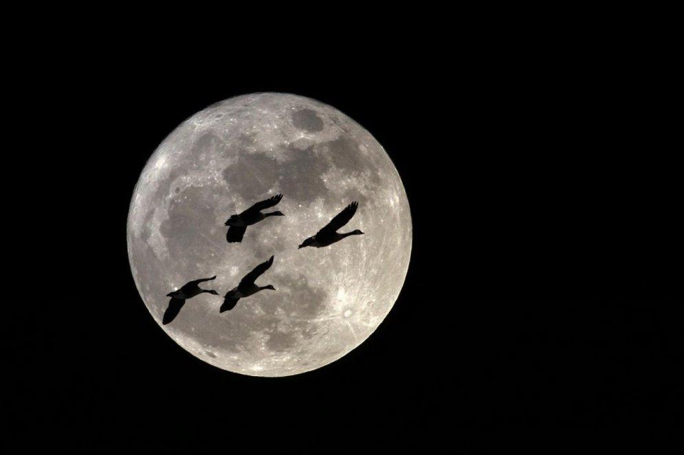 Kosmonautikas dienā – 12 interesanti fakti par kosmosu