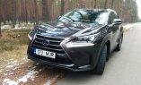 """Тест-драйв: гибридный Lexus NX300h – """"младший"""" кроссовер в линейке"""