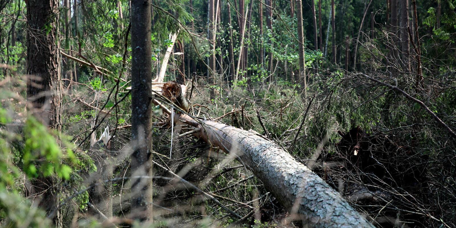 Lādiņš sprāgst ārpus Ādažu poligona – zem tiesas lupas zemes īpašnieces 'īpašais upuris'