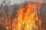 'Nevainīga' zaru dedzināšana Korģenē teju noslēdzas ar meža ugunsgrēku