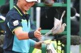 ВИДЕО: Наглый голубь прервал матч с участием Надаля