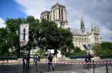 Напавший на полицейского у собора Парижской Богоматери хотел отомстить за Сирию