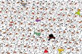 Internetu satricina optiskā ilūzija ar sniegavīriem un pandu