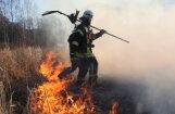 Спустя восемь часов потушен крупный пожар на Спилвских лугах