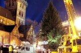 ФОТО: Как на Домской площади устанавливали рождественскую елку