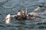 ФОТО, ВИДЕО: Как Путин отдыхал и с подводным ружьем охотился за щукой