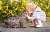 Котики признаны домашними любимцами №1 в Латвии