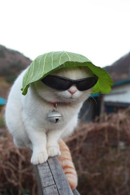 Sargā sevi no saules!