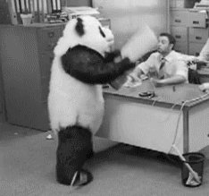 Pandu neinteresē problēmas...