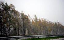 Синоптики предупреждают об усилении ветра в ночь на вторник