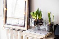 Pavasara interjera tendences, kas mājoklī viesīs radošas vēsmas