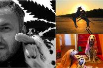 Pirmais gads ir 'vāks': divu dalmāciešu saimnieks par ikdienu ar žiperīgiem suņiem