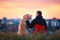 Katrs trešais Latvijas iedzīvotājs piepildījis savu sapni – kļuvis par suņa saimnieku, liecina pētījums