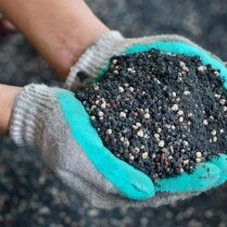 Чем удобрить землю осенью, если нет навоза