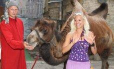 Latvijas slavenības ballējas ar kamieli