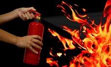 Video: Kā būt draugos ar uguni?