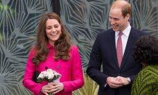 Londonā jau sākušās karalisko dzemdību 'medības'