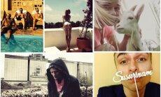 TOP 10 latviešu šovbiznesa zvaigznes 'Instagramā'