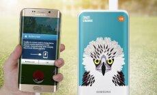 """Сколько смартфонов продано во всем мире: лидеры рынка и самые """"трендовые"""" бренды"""