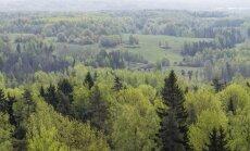 Latvijas mežos joprojām saglabājas augsta ugunsbīstamība, apgalvo VMD