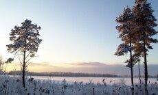 Ночь на субботу будет самой холодной с февраля прошлого года