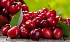 Сочная и яркая вишня: почему она так полезна для нашего здоровья