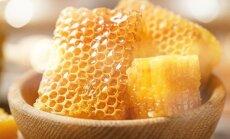 Пчеловоды: погодные условия в этом году не позволили собрать вересковый мед