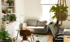 Vairāki paklāji vienā telpā – kā veiksmīgi kombinēt stilus un tekstūras