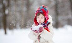 В Риге и Елгаве выпало по 13 см снега, завтра будет еще больше
