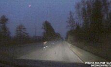 ВИДЕО: Встреча с лосем на скорости 95 км/ч