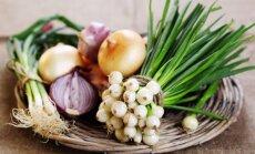 Sirdij, gremošanai un imunitātei. Kāpēc ieteicams ēst sīpolus un kā tos pagatavot