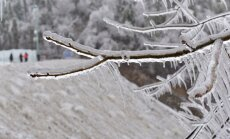 Синоптики обещают морозную неделю
