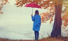Синоптики: в воскресенье немного усилится ветер, пройдут дожди