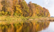 Zelta rudens šogad solās būt nepieredzēti krāšņs