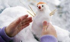 На этой неделе в Латвии ожидаются метель и снегопады