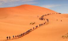 Tramps ieteicis eiropiešiem būvēt sienu Sahārā
