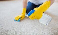 Efektīvi paņēmieni, kā atsvaidzināt sasmakušu paklāju