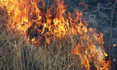 Ugunsdzēsēji Latvijā piektdienas pievakarē dzēš 30 kūlas ugunsgrēkus