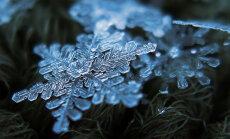 Daugavpilī novērots pirmais sniegs