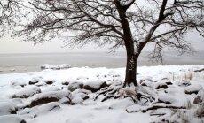 Во вторник в Латвии ожидается снег