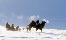 Foto: Kā dienas nekurienes vidū vada tuviešu nomadi