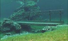 Video: Dabas parks Austrijā, kas ik pavasari pilnībā ir zem ūdens