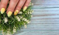 Nagi kā Lieldienu oliņas: košas idejas pavasarīgam dizainam
