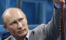 В МИД РФ назвали лидеров западных стран мелкими по сравнению с Путиным