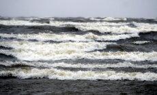 """Исследователь: Балтийское море зарастает, в нем образуются """"мертвые районы"""""""