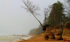Brīvdienu maršruts: Veczemju klinšu un Vidzemes akmeņainās jūrmalas košās ziemas krāsas