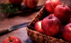 На страже здоровья: чем полезны яблоки