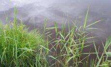 Engures ezerā zemākais ūdens līmenis novērojumu vēsturē