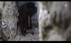 Video: Kā 'Daesh' Mosulā rok tuneļu sistēmas, gaidot pilsētas aplenkumu